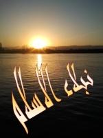 ايهاب محمد النعناعى